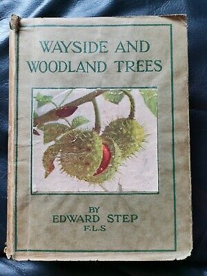 Wayside And Woodland Trees Edward Step 1942 HB Book Vintage Dust Jacket • 12.95£