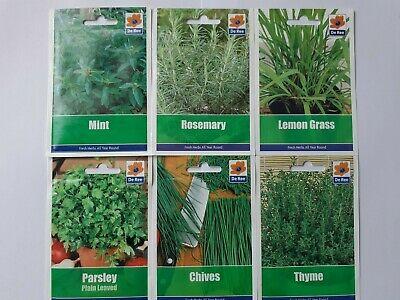 Herb Seed Collection H6/2.Parsley, Chives, Mint, Rosemary, Thyme, Lemon Grass. • 5.70£