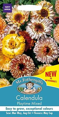 £3.35 • Buy Calendula Seeds 'Playtime Mixed' By Mr Fothergills FREE UK DELIVERY Flower Seeds