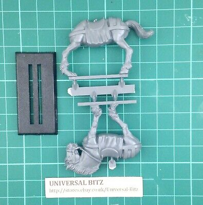 Warhammer AOS Empire Free Peoples Pistoliers Outriders Horse B B1 B • 4.99£