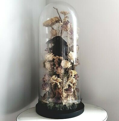 Taxidermy Crow In Large Antique Victorian Glass Dome / Collection Only LE8 • 280£