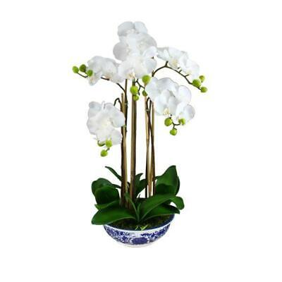 AU169 • Buy Real Touch Phalaenopsis Orchids In Dynasty Pot 70 Cm