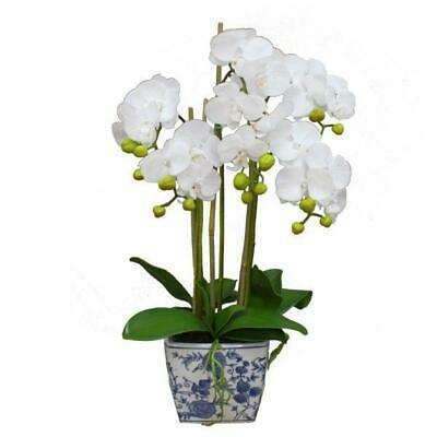 AU129 • Buy Real Touch Phalaenopsis Orchids In Dynasty Pot 70 Cm