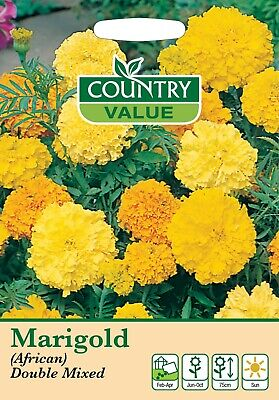 Marigold Seeds African Double Mixed Seeds Country Value FREE UK DELIVERY Flowers • 2.39£