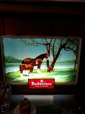 $ CDN594.54 • Buy Rare Vintage Budweiser Beer Advertising Lighted Electric Sign Clydesdale 1950's
