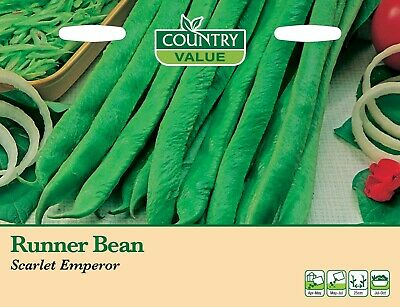 Runner Bean 'Scarlet Emperor' By Country Value FREE UK DELIVERY Vegetable Seeds • 2.59£