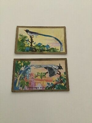 $4.63 • Buy Cavanders Tobacco 1926 Feathered Friends Magpie & Flycatcher Cards W