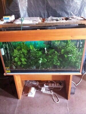 AU300 • Buy Aquarium: 4ft All Glass Tropical Fish Tank C/w Stand & Light