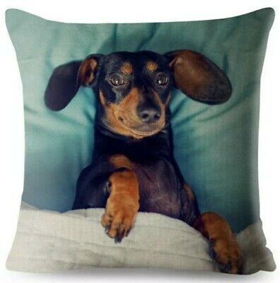 £12.99 • Buy Cute Soft Dachshund Cushion Cover Large Sausage Dog Lover Novelty Gift