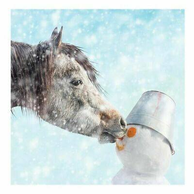 £3.45 • Buy Christmas Card - Horse & Snowman Off With His Nose