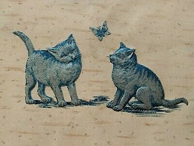 Early Embossed Cat Postcard. Kittens Butterfly. Cat Lover. PFB Berlin Chromo.  • 3.99£