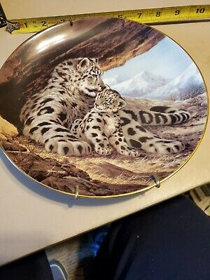£3.60 • Buy  The Snow Leopard , Last Of Their Kind, Animal, Home. Decorative Plate, Cat