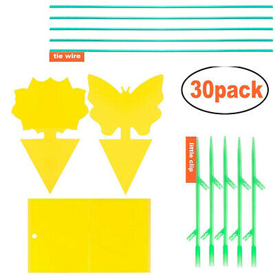 AU12.05 • Buy Sticky Trap Fruit Fly Gnat Trap Yellow Sticky Bug Trap Dual-Side Non Toxic