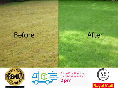£37.99 • Buy Fast Growing Grass Seed 10kg Lawn Hard Wearing Tough Back Lawn Repair Quick Grow