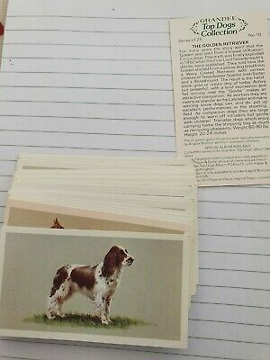 Grandee Top Dogs Collection Cigarette Cards (36) • 1.50£