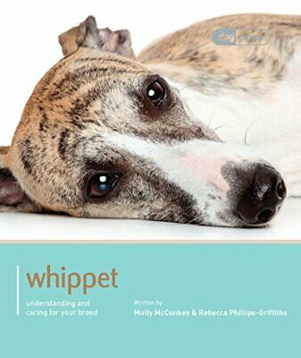 Whippet - Dog Expert New Paperback Book • 16.18£