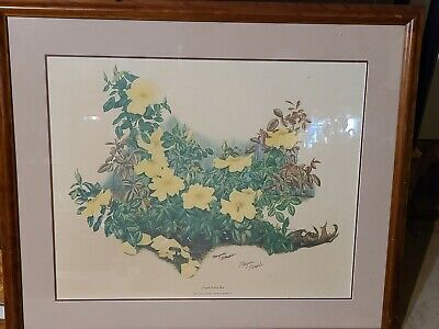 $ CDN312.44 • Buy Maryrose Wampler  Single Yellow Rose  Signed Framed And Matted