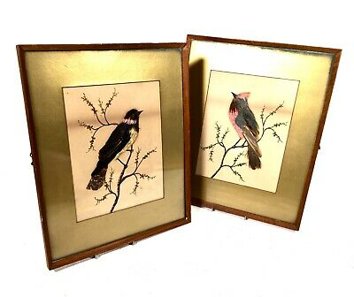 £269 • Buy Antique Victorian Watercolour & Bird Feather Painting Picture Pair / Taxidermy