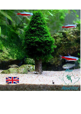 Java Moss Tree Christmas Moss Holder Aquarium Tank Ornament Plant Growing Frame • 6.99£