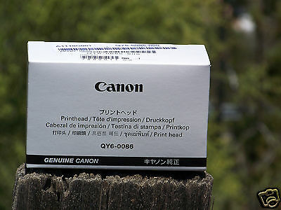 $ CDN148.26 • Buy New Genuine Canon QY6-0086-000 Printhead For MX722 MX922 IX6820