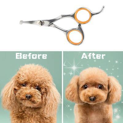 £6.39 • Buy Pet Dog Grooming Pet Hair Scissors Grooming  Cutting Thinning Curved Shears