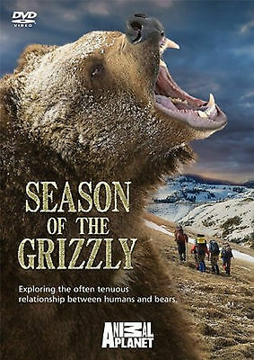 £0.49 • Buy Animal Planet - Season Of The Grizzly Bear - DVD - BRAND NEW SEALED Bears Brown