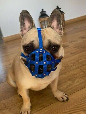 £16.99 • Buy  Dog Muzzle For French Bulldog   Frenchies  A Other Similar Snouts Short Snout