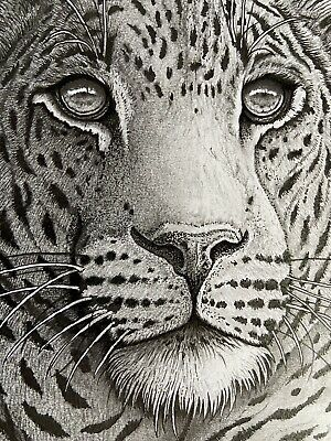 £64.99 • Buy Original Framed Graphite Ink And Charcoal Study Of Leopard On A3 Cartridge Paper
