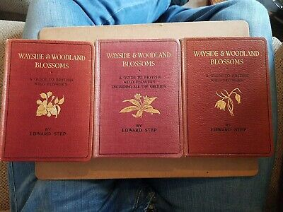 £25 • Buy Wayside And Woodland Blossoms Series 1 ,2 And 3 By Edward Step (Early Editions)
