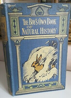 £9.99 • Buy The Boys Own Book Of Natural History By Rev J. G. WOOD