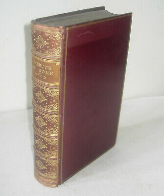 £84.99 • Buy Rev. J. G. WOOD - INSECTS AT HOME - 1892 - FULL LEATHER FINE BINDING