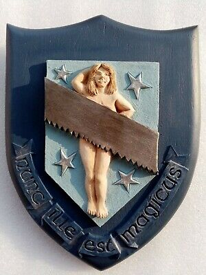 £17.99 • Buy Discworld Conjurors Guild Coat Of Arms DW03C Clarecraft Collectors Guild
