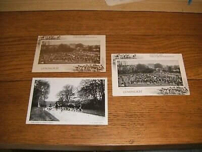 £3 • Buy 3 Vintage Postcards Photographs Fox Hunting New Forest Foxhounds & Deerhounds