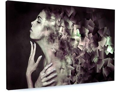 £72.70 • Buy Stunning Abstract Model Art Canvas Picture Print #3640