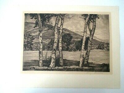 £125.87 • Buy Signed Original Etching Luigi Lucioni  WHITE AND SHADOWS  Tree & Hill 1950s  Z14