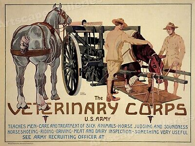 $11.95 • Buy US Army Veterinary Medical Corps Horse And Cart WWI Recruiting Poster - 18x24