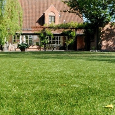£37 • Buy Cheap Artificial Grass Clearance | 6mm To 40mm Thick Soft Luxury Realistic Turf