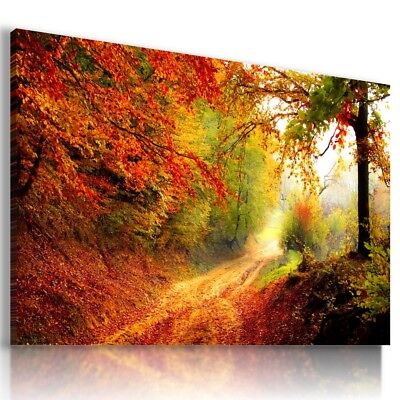 £46.99 • Buy PARK TREES AUTUMN PARADISE View Canvas Wall Art Picture L463 MATAGA