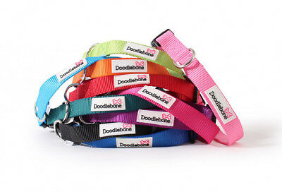 Doodlebone Bold Nylon Dog Puppy Collars - 11 Colours To Choose From • 3.49£