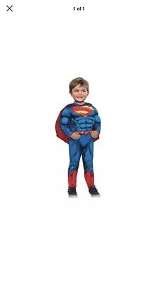 db55064298c toddler superman costume muscle