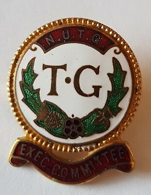 £5.99 • Buy TG National Union Of Towns Women Enamel Pin Badge NUTG Executive Committee