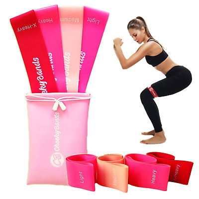 AU19.95 • Buy Resistance Booty Bands Set 4 Loop Bands Gym Workout Fitness Exercise Guide & Bag