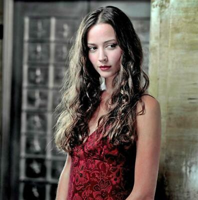 $ CDN9.25 • Buy Amy Acker 8x10 Photo Picture Very Nice Fast Free Shipping #14