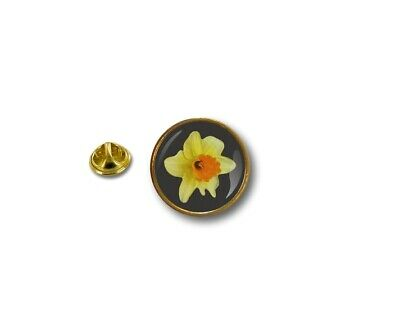£3.49 • Buy Pins Pin's Flag National Badge Metal Lapel Button Vest Yellow Daffodil St David