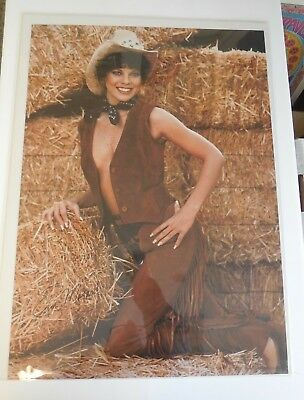 $35 • Buy Erin Moran Poster    1981    Pro Arts Inc