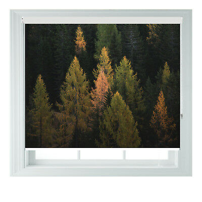 Ever Green Forest Photo Printed Blackout Roller Blinds Various Sizes  • 65£