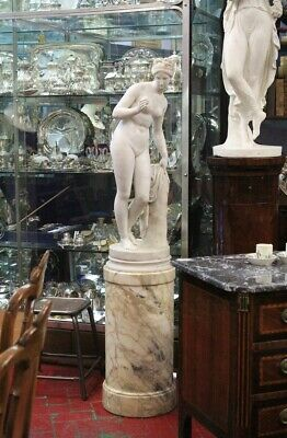 Sculpture White Marble Located On Column Macchiavecchia, Period '800 • 19,688.80£