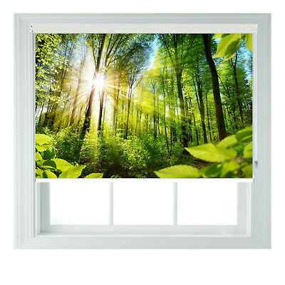 Green Forest Sunshine Printed Photo Black Out Roller Blinds 2 3 4 5 6ft • 65£