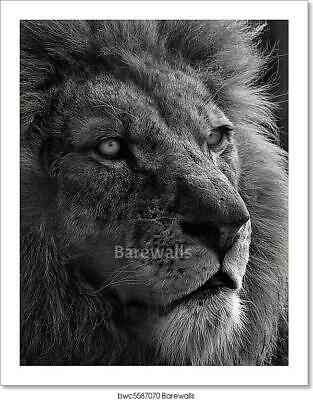 $19.95 • Buy The King In Black And White Art/Canvas Print. Poster, Wall Art, Home Decor