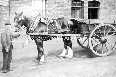 Ewq-88 Shire Horse And Cart, Birtley, Co Durham. Photo • 3.25£